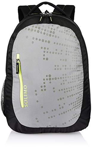 Amazon Brand – Solimo Laptop Backpack for 15.6-inch Laptops (29 litres, Grey)