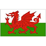DierCosy 5ft x 3ft Wales Flag 2018 Russia World Cup Welsh National Flags Country Banner