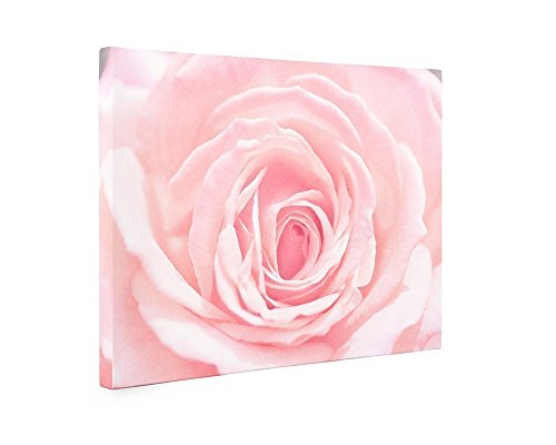 Large Format Prints, Canvas or Unframed, Pink Rose Flower Wall Art, Floral Decor 'Pink and Shabby' by Offley Green