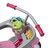 Radio Flyer 4-in-1 Stroll 'N Trike Pink