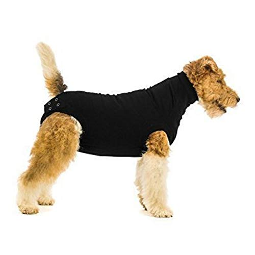 Suitical Recovery Suit Dog, Small Plus, Black (Best Mini Labradoodle Breeders)