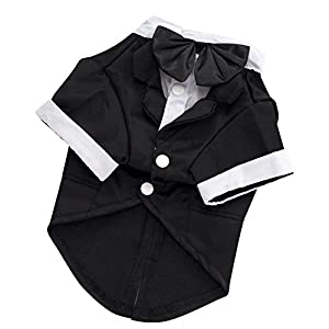 Kuoser Dog Shirt Puppy Pet Small Dog Clothes, Stylish Suit Bow Tie Costume, Wedding Shirt Formal Tuxedo with Black Tie, Dog Prince Wedding Bow Tie Suit,XXL