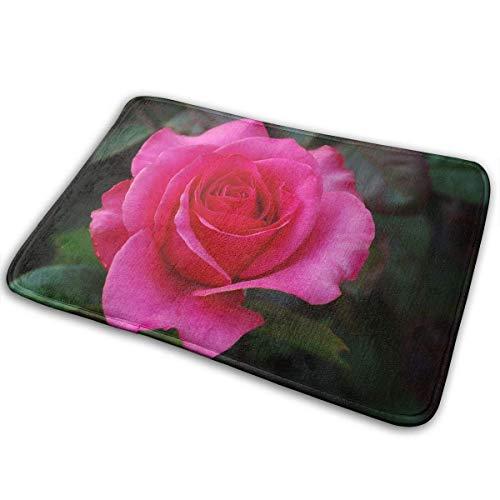 Roses Meaning of Dream Home Door Mat Super Absorbent Antislip Front Floor Mat,Soft Coral Memory Foam Carpet Bathroom Rubber Entrance Rugs for Indoor Outdoor