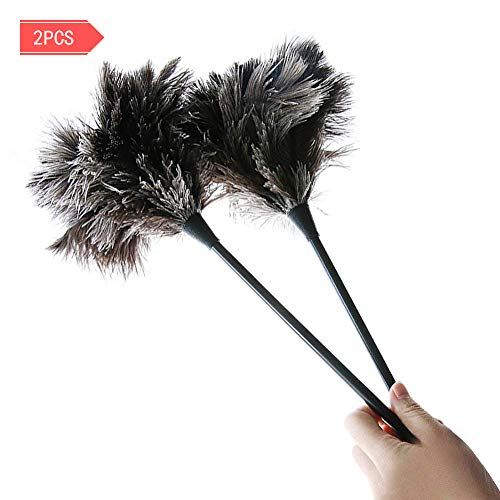 MEIWO Dust Brush 2 Pack Mini Ostrich Feather Duster Perfect for Small Computer Accessories, Cars, Furniture by MEIWO