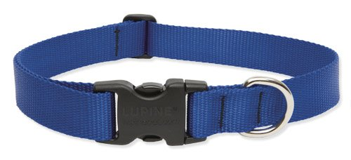 Lupine 1-Inch Blue 16-28-Inch Adjustable Dog Collar for Large Dogs, My Pet Supplies