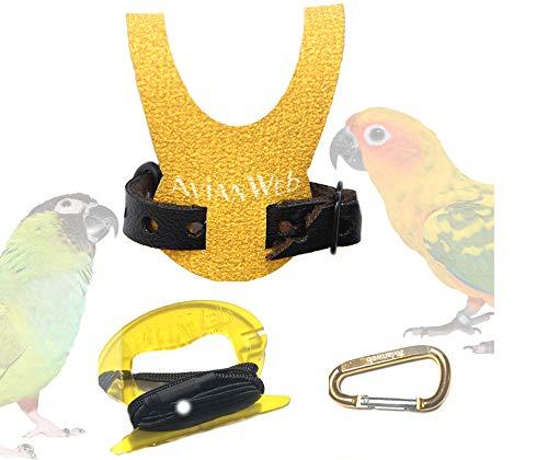 Avianweb EZ Conure Harness & 6 Foot Leash (Dazzling Sun, Generic)