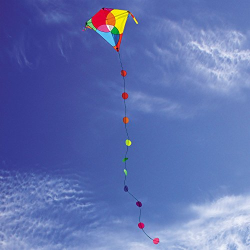 Into The Wind Bubbles Diamond Kite by Into The Wind