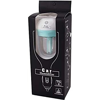 Amazon.com: econoLED Car Humidifier,Mini Air Purifier