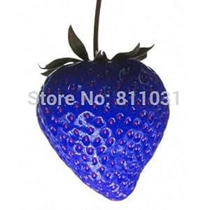 2016 NUEVA venta caliente 100pcs / bolso de la fresa azul fruta rara jardín de las semillas de hortalizas planta de los bonsai casa