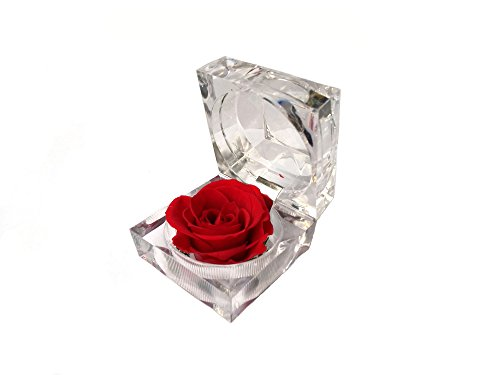 Mini Acrylic Preserved Flower Dried Rose Ring Earrings Box - Personalised Glasses Case