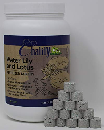 (Chalily Aquatic Plant Fertilizer for Water Lily and Lotus | 10-14-8 Guaranteed Analysis with Humates| 300 Tablets )
