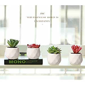 AmyHomie Artificial Plants Set of 4 Mini Fake Succulent Plants with Pots for Home Weeding Office Decoration 6