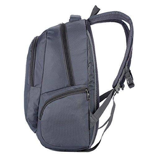 Wewod bolso de la manera de los hombres de la manera bolso al aire libre del alpinismo del recorrido bolso de la computadora del negocio impermeable 33 cm * 48 cm * 19 cm (Púrpura) Gris