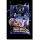 Angry Birds Star Wars - Epic Video Game Poster