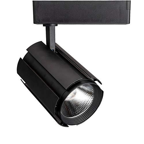 Head Single Track Modern (GALYGG LED Track Lighting Heads Kit Black, 3 - Wire Lighting Fixtures Spotlight, 30W 3000LM 3000K Warm White, COB Light Source - 1 Pack)