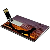 Luxlady 32GB USB Flash Drive 2.0 Memory Stick Credit Card Size A silhouette of a mermaid in the sunset IMAGE 21483256