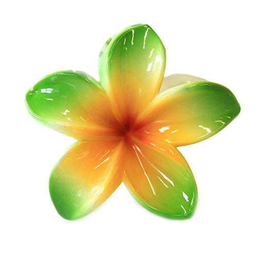 Hawaii Luau Party Dance Performance Plastic Hand Painted Pastel Plumeria Flower hair claw clips in Green ()