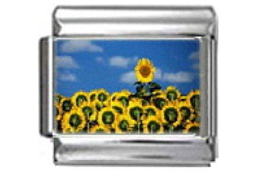 Stylysh Charms Sunflower Field Flowers Photo Italian 9mm Link GA026 - Flower 9mm Italian Charm