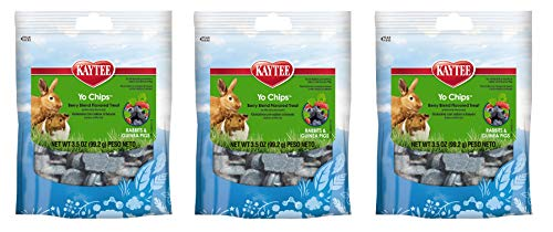 (Kaytee Mixed Berry Flavor Yogurt Chips for Rabbit and Guinea Pig, 3.5-oz bag 2 Pack)