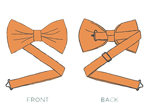 Mens Silk Pre-Tied Bow Ties Designer Fashion
