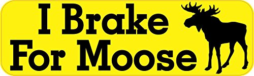 StickerTalk 10x3 I Brake for Moose Bumper Magnet Magnetic Car Truck Vehicle Animal Magnets