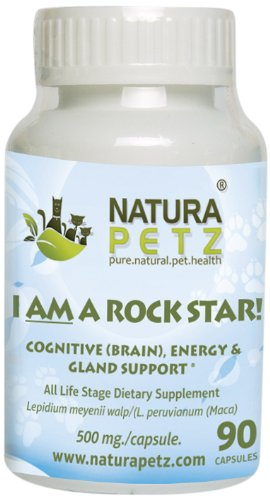 I AM A ROCK STAR! Memory, Gland (Hypothalmic, Pituitary and Adrenal) & Energy Support for All Life Stage Dogs and Cats