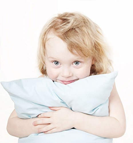"""Toddler Pillow (13"""" x 18"""") No Pillowcase Needed - Hypoallergenic - Machine Washable - Double Stitched - Made in Virginia by A Little Pillow Company (White)"""