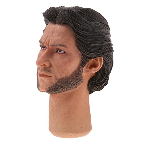 Figure 12' Wolverine (Dovewill 1/6 Famous Film Star Head Sculpt Head Carving for 12'' Wolverine Collectible Figure Hot Toys)