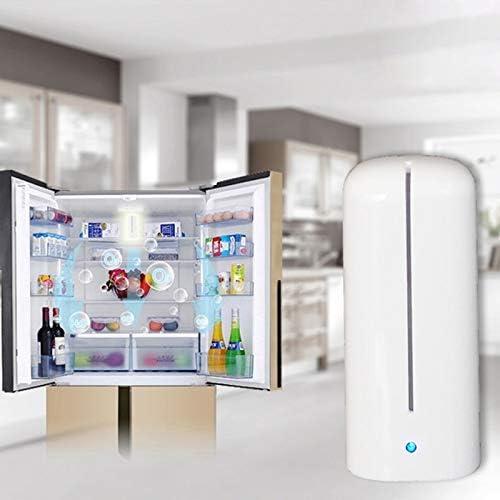 YRW ONDER Inicio Mini esterilizador del purificador del Aire reactivo del oxígeno de Enerfer para el refrigerador/el Armario/el Coche Herramientas de Cocina: Amazon ...
