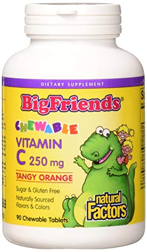 Natural Factors - Vitamin C Big Friends 250mg, 100% Natural Fruit Chew, Tangy Orange, 90 Chewable Tablets
