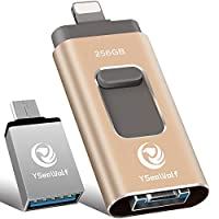 iPhone Flash Drive for iPhone 256GB USB Flash Drive Type c Flash Drive 3.0 YSeaWolf photostick Mobile for iPhone External Storage, Type c, Android, PC iPhone Picture Stick iPhone Memory Stick (Gold)