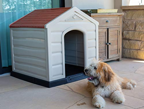 Buy dog houses