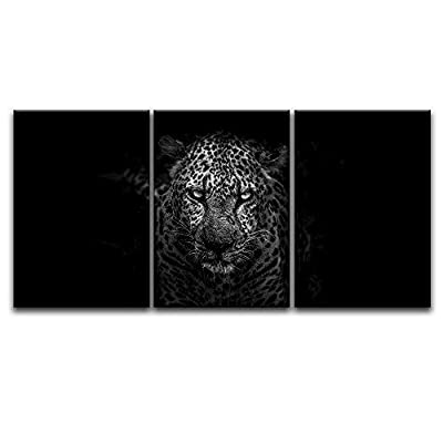 Intense Leopard On Black Background - 3 Panel Canvas Art