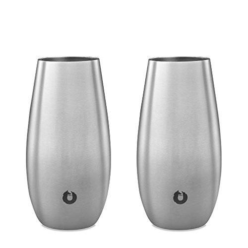 SNOWFOX Insulated Flute Stainless Steel Stemless Champagne Glass, Set Of 2, Classic