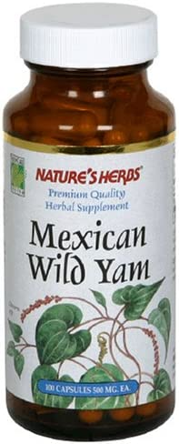 Nature's Life Wild Yam 1000mg Herbal Supplement Women's Health Formula