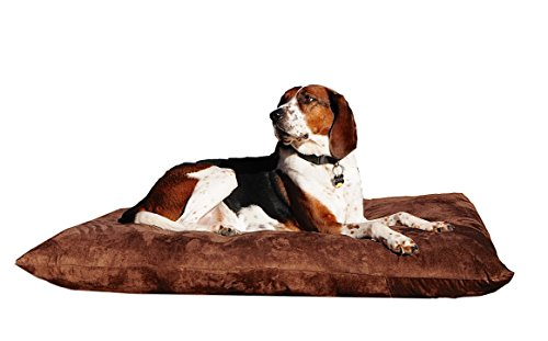 Bailey's Washable Dog Bed (Medium, Chocolate) For Sale