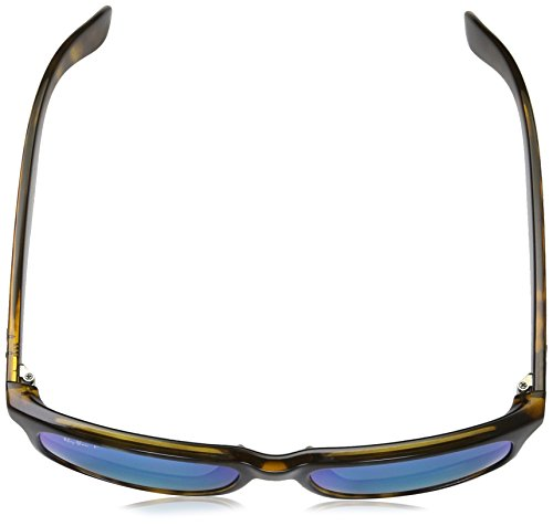 sol unisex Ban Shiny de Gafas Ray Havana qHIUtzxw
