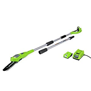Greenworks 8-Inch 24V Cordless Pole Saw, 2.0 AH Battery Included 20352