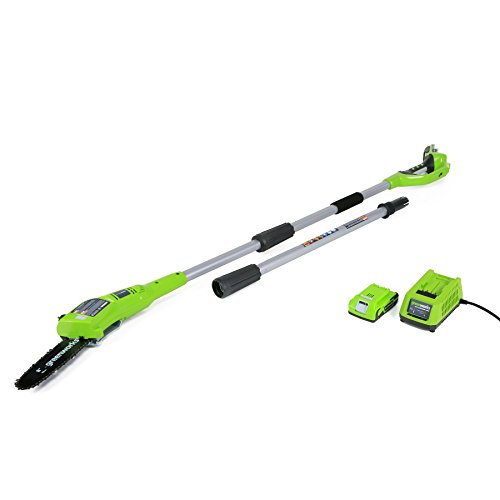 GreenWorks 20352 24V 8-Inch Cordless Pole Saw, 2Ah Battery and Charger Included by Greenworks