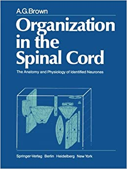 Book Organization in the Spinal Cord: The Anatomy And Physiology Of Identified Neurones
