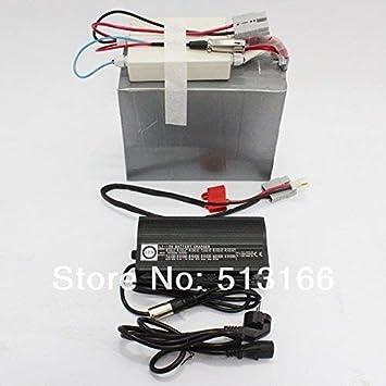 HYLH Buena Venta batería de Litio LiFePO4 24V 40AH con BMS ...