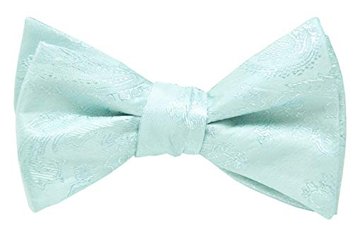 Mens Silk Paisley Self Tie Bow Ties-Jacquard Butterfly Bowties-Various Colors (Mint Green)