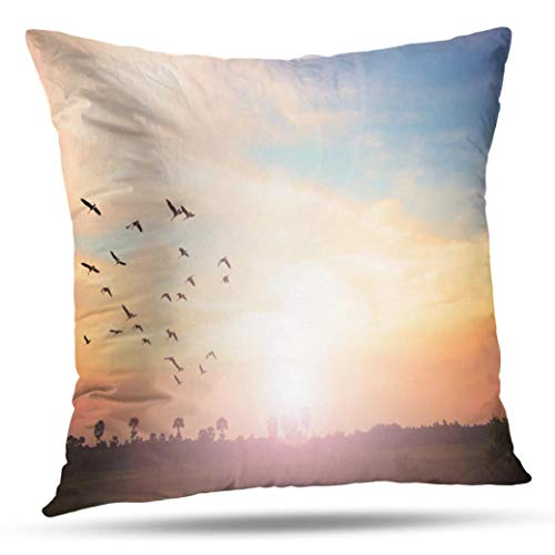 Geericy Spirit Decorative Throw Pillow Covers, Colorful Sky Dramatic Sunset with Twilight Color and Cushion Cover 18 x 18 Inch for Bedroom Sofa