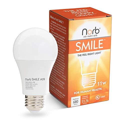 NorbSMILE Advanced Full Spectrum A19 LED Light Bulb, Natural Sunlike Spectrum, Supplements SAD Light, Supports Circadian Rhythm, Mood Energy Performance.