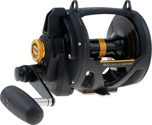 Fishing 2 Reel Speed (Penn Fishing Squall Lever Drag 2 Speed Reel, 50VSW 1292938)