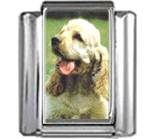 Stylysh Charms Cocker Spaniel Dog Photo Italian 9mm Link DG160 ()