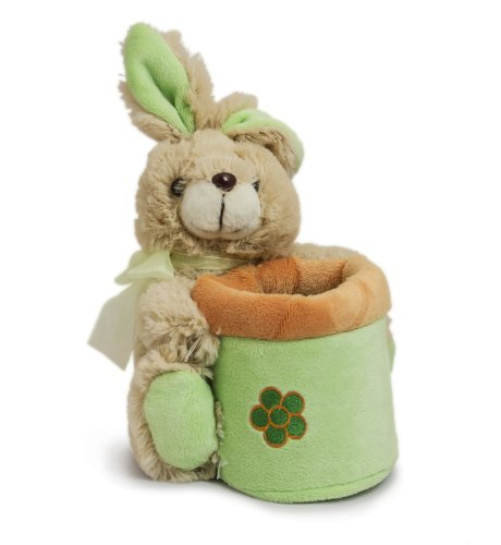 Beverly Hills Teddy Bear Company Springtime Bunny Basket in Green