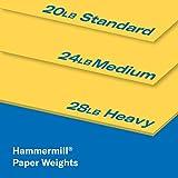 Hammermill Colored Paper, 20 lb Goldenrod Printer