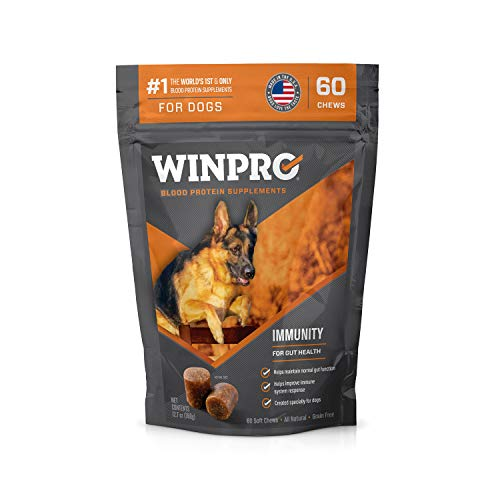 WINPRO Immunity Blood Protein Supplement Soft Chews for Gut Health and Immunity Boost (60-Count Pouch)