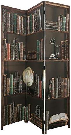 "kieragrace Bota Triple-Panel Floor Screen - 47"" x 71"", Books"